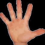 Сонники: к чему снятся пальцы?