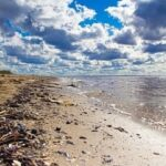 Сонники: к чему снится грязное море
