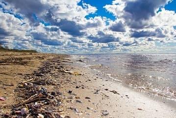 К чему снится грязное море